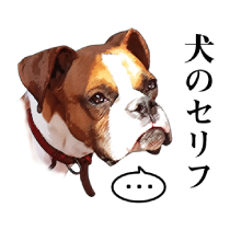 犬のセリフ